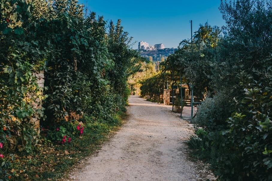 החווה האורגנית טור סיני - ירושלים