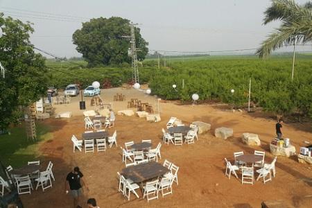 מטע רימונים - עמק חפר