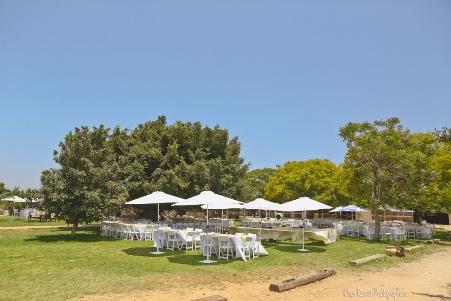החווה של תל אביב - תל אביב
