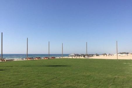מים על החוף  - ניצנים